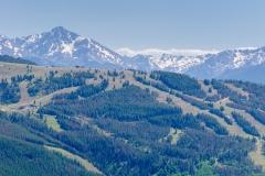 vail_summer_ski_runs