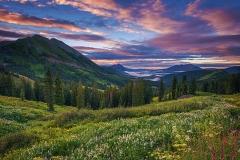 wildflowers%20pink%20sunrise%20Rocky%20Mountains_520643653_RGB_small (2)